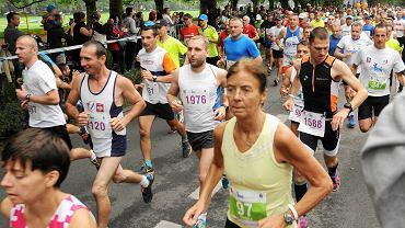 Półmaraton Gryfa 2014