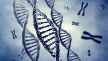 Z 25 tys. genów, które ma człowiek, dobrą wiedzę mamy o 5 tys. Pozostałe potrafimy przeczytać, ale nie potrafimy ich zrozumieć