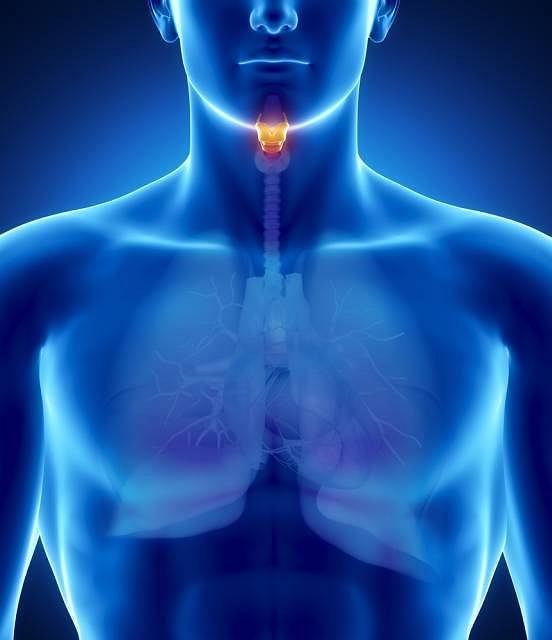 Fiberoskop to rodzaj bardzo drobnego endoskopu, który wykorzystywany jest przy diagnozowaniu zmian w obrębie górnych dróg oddechowych tj. nosa, gardła, nagłośni, krtani