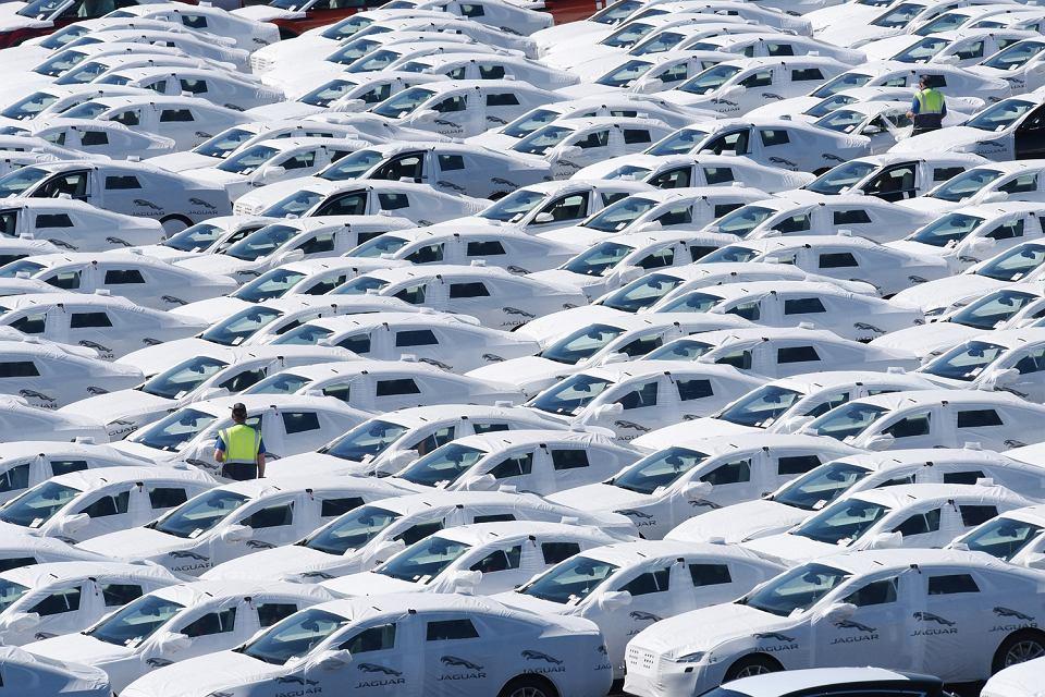 Nowe auta na fabruycznym parkingu.