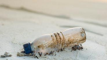 Plastik jest wszędzie. Jak to możliwe, że trafia nawet do naszego żołądka?