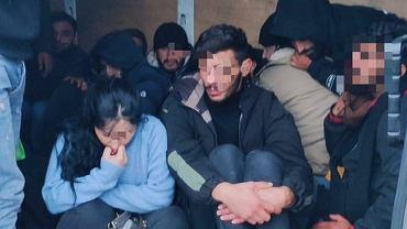 Migranci przewożeni busem