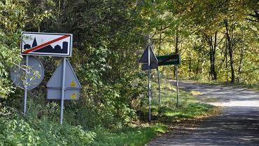 W pobliżu tego lasu zostało znalezione ciało zamordowanego