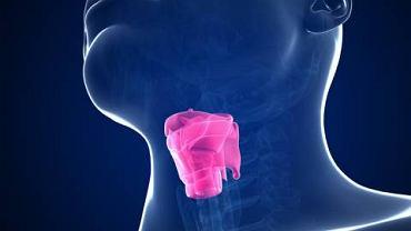 Direktoskopia to rodzaj badania laryngologicznego wykorzystywane przy diagnozowaniu raka krtani