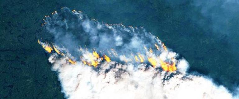 Pożary w Arktyce uwolniły do atmosfery 50 megaton dwutlenku węgla