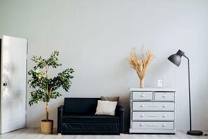 Pięć elementów wystroju wnętrz dla fanów ekstremalnego minimalizmu