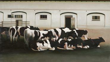 Krowy - Halina Eysmont