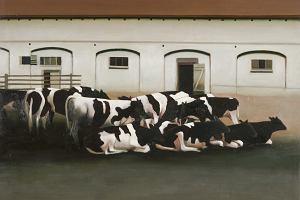 Potrzebny nowy podatek od mięsa? Raport Greenpeace: W 2050 roku rolnictwo będzie produkowało ponad połowę gazów cieplarnianych