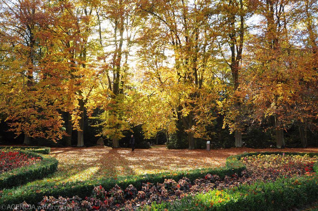 Jesień w Polsce - zdjęcie ilustracyjne