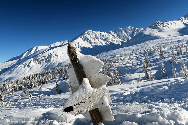 Zdjęcie numer 16 w galerii - Słońce, śnieg i szczyty. Piękna pogoda w Tatrach, zachwycające widoki