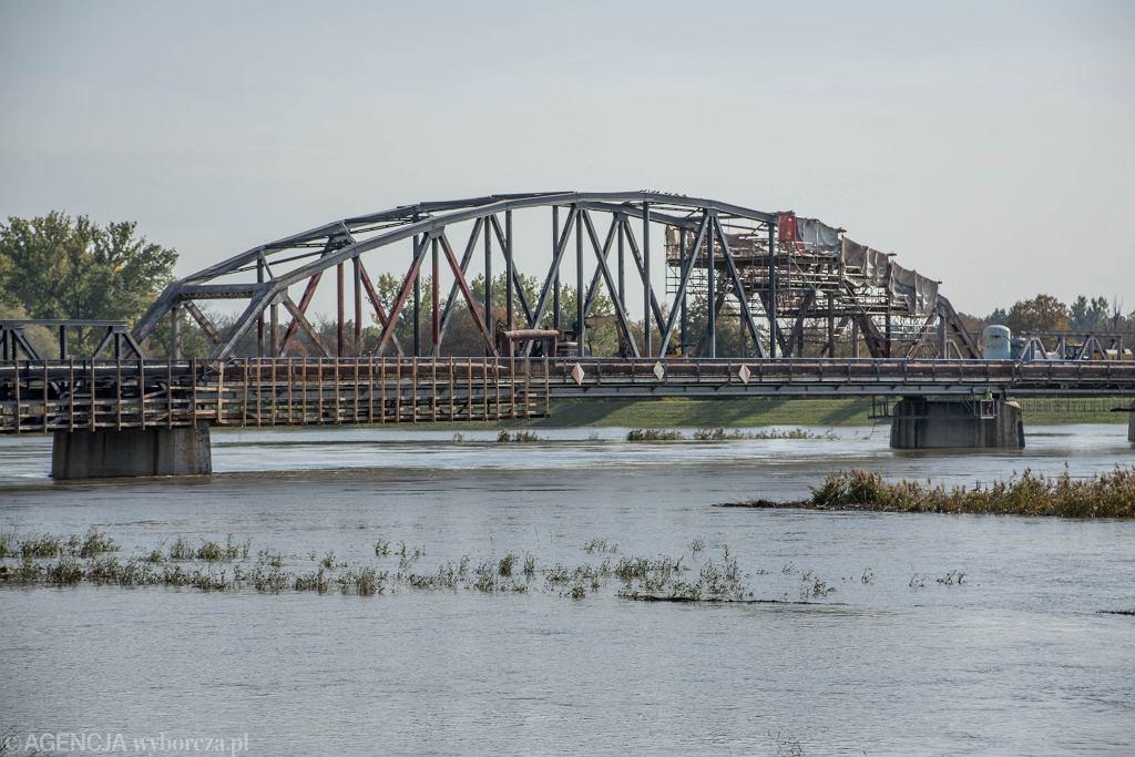Wysoki stan wody w Odrze i podtopienia - Cigacice