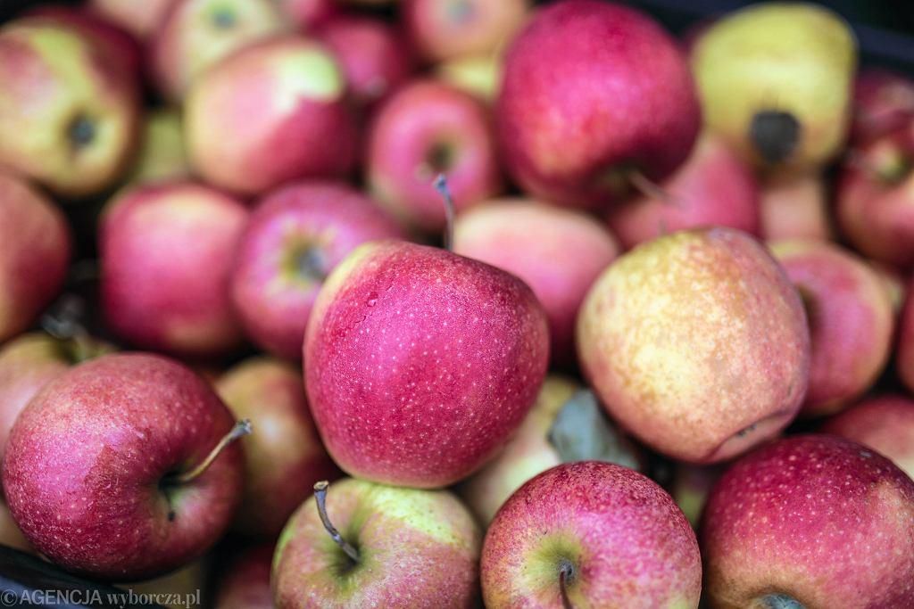 Sadownicy domagają się należnych pieniędzy za setki ton jabłek (zdjęcie ilustracyjne)
