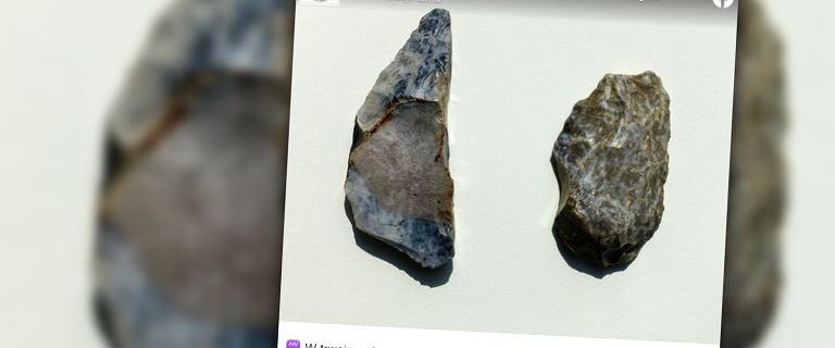 """Iłża. Archeolodzy znaleźli narzędzia neandertalczyków. """"Ważne odkrycie"""""""
