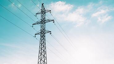 Koronawirus w Polsce. Tauron: Dostawy gazu i prądu niezagrożone - zdjęcie ilustracyjne