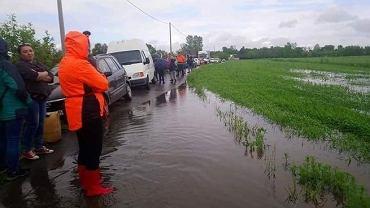 Kolejka wolontariuszy, przybyłych do Wadowic Dolnych, by ratować psy