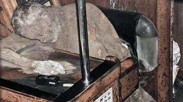 Zmumifikowane ciało Manfreda Fritza Bajorata