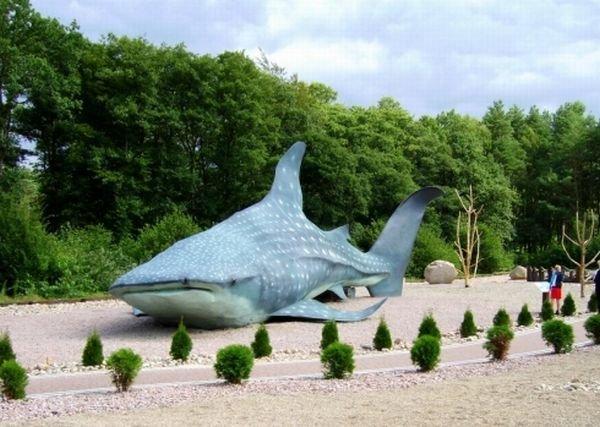 Sea park/ Fot. www.seapark.pl