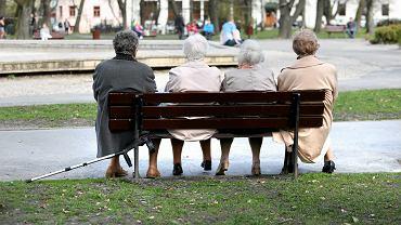 Czternasta emerytura. Kiedy wypłata czternastki? Ile wyniesie kwota dodatku? (zdjęcie ilustracyjne)