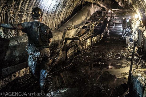 Ciekawe fakty dotyczące węgla