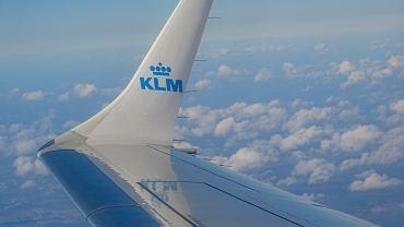 Samolot linii lotniczych KLM (zdjęcie ilustracyjne)