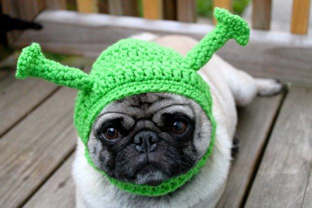 nosiłabym taką czapkę