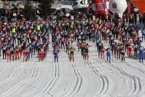 Puchar Świata w biegach narciarskich na Dolnym Śląsku