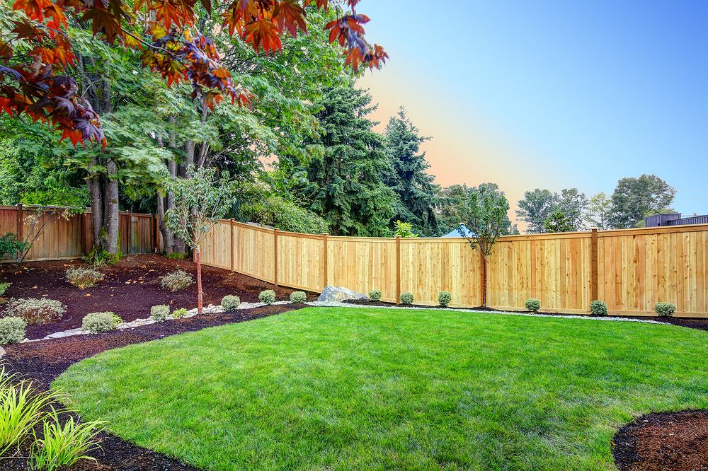 9View,Of,An,Attractive,Backyard,With,New,Planting,Beds,And