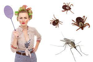 Wystarczająco Perfekcyjna Pani Domu: Jak radzić sobie z komarami i innymi owadami?
