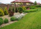Projektujemy ogród. Architekt krajobrazu potrzebny od zaraz