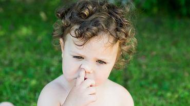 Jednym z najpowszechniejszych nawyków małych dzieci jest dłubanie w nosie.