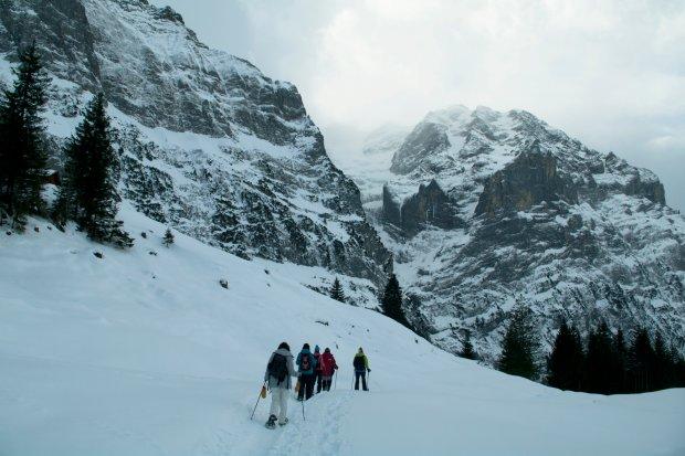 Wycieczka na rakietach śnieżnych