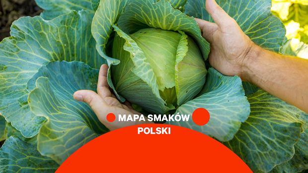 """Królowa polskich upraw, kulinarny majstersztyk, gwiazda na stole. Mimo to bigos traktujemy jak """"śmietnik"""""""