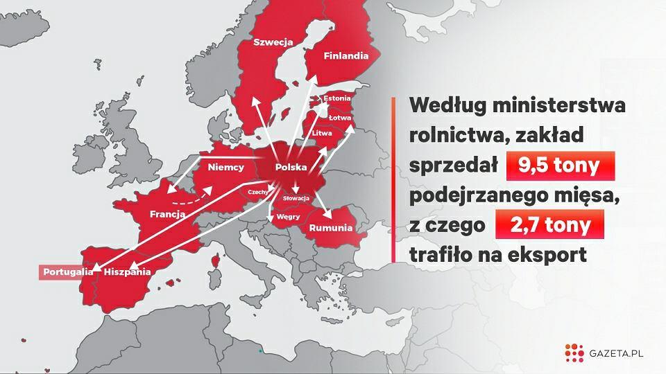 Mięso z chorych krów z Polski trafiło do 14 krajów (w tym Polski) Unii Europejskiej