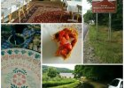 Dolina Bobru na weekend - zieleń, slow food, czysty relaks. Jeszcze nieodkryta Polska idealna [SAMOCHODEM NA DOLNY ŚLĄSK]