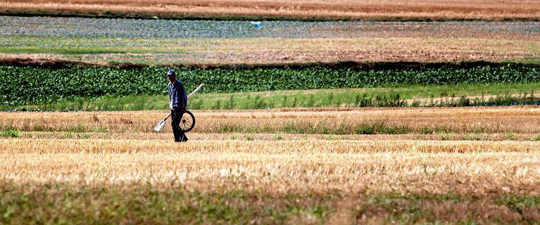 Rolnicy chcą obniżenia wieku emerytalnego do 55 i 60 lat