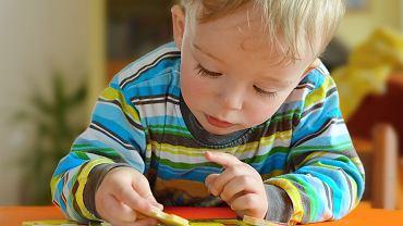 Zabawki dla dwulatka muszą być kupowane z myślą o wieku, możliwościach i umiejętnościach dziecka. Jeśli będą przeznaczone dla maluszka, szybko się znudzą. W przypadku, gdy będą kupione na wyrost, mogą zniechęcić.