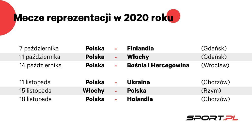 Mecze reprezentacji Polski w 2020 roku