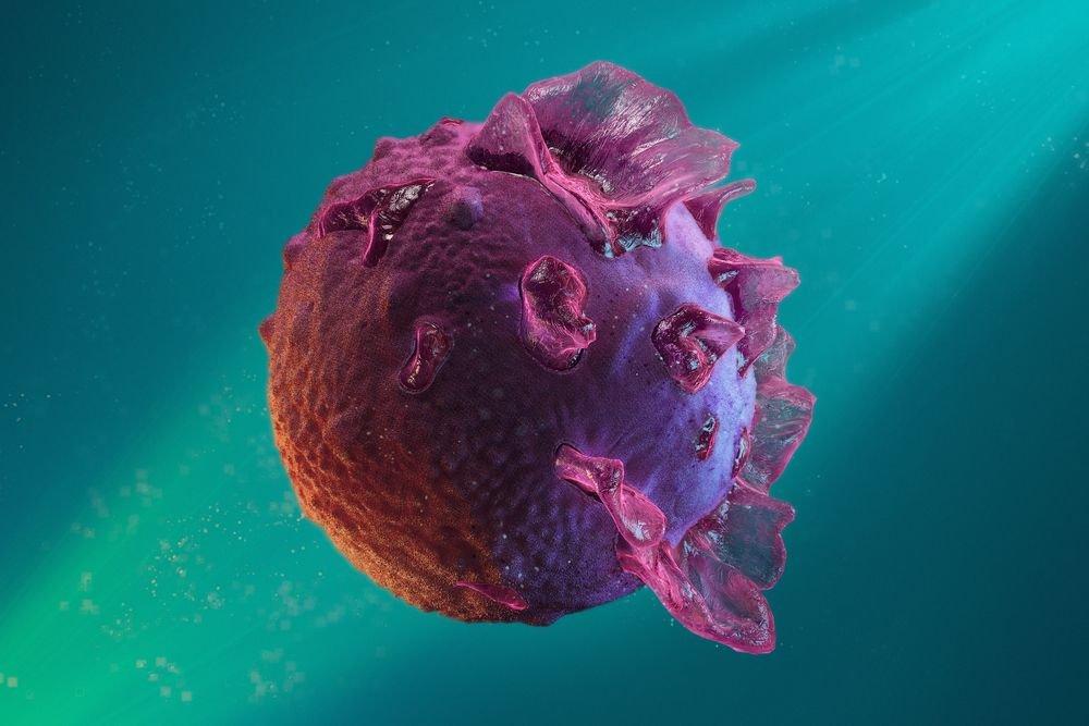 mononukleoza wirus