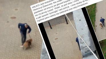 Kopał psa podczas spaceru
