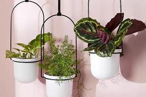 Nowoczesne kwietniki do salonu: ustawiamy rośliny nie tylko na parapecie