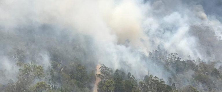 Australia znów zmaga się z ogromnymi pożarami. Spłonęła już blisko połowa Wielkiej Wyspy Piaszczystej