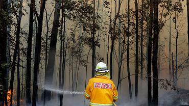 Próba opanowania pożaru w pobliżu Tomerong w Australii, środa, 8 stycznia 2020 r.,