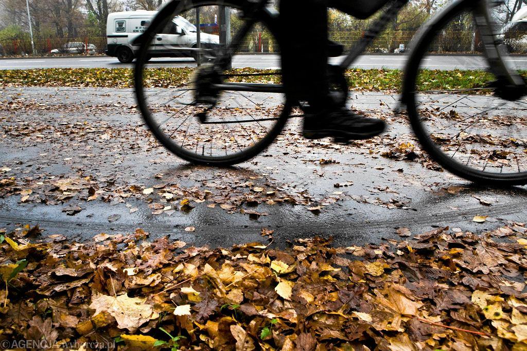 Droga dla rowerów
