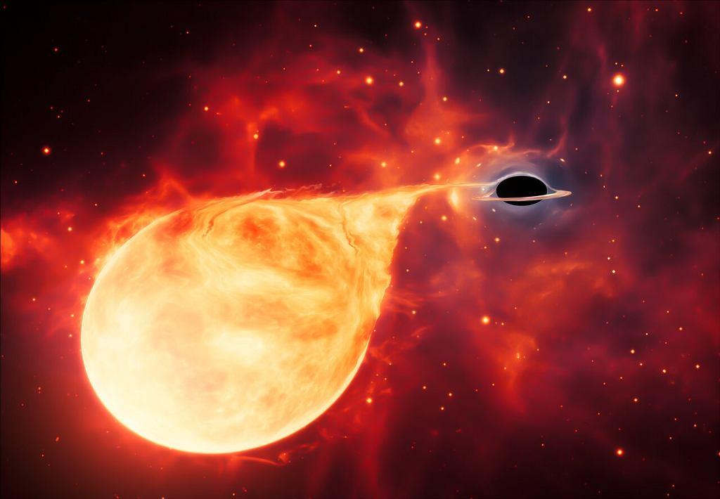 Czarna dziura pożerająca pobliską gwiazdę (wizja artysty)