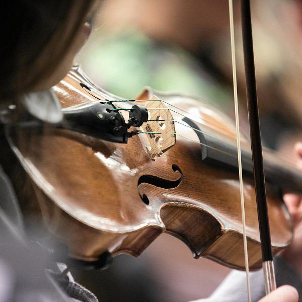 Lekcja gry na skrzypcach