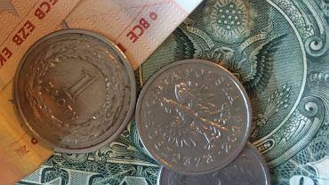 Dolary i euro w banknotach i złotówki