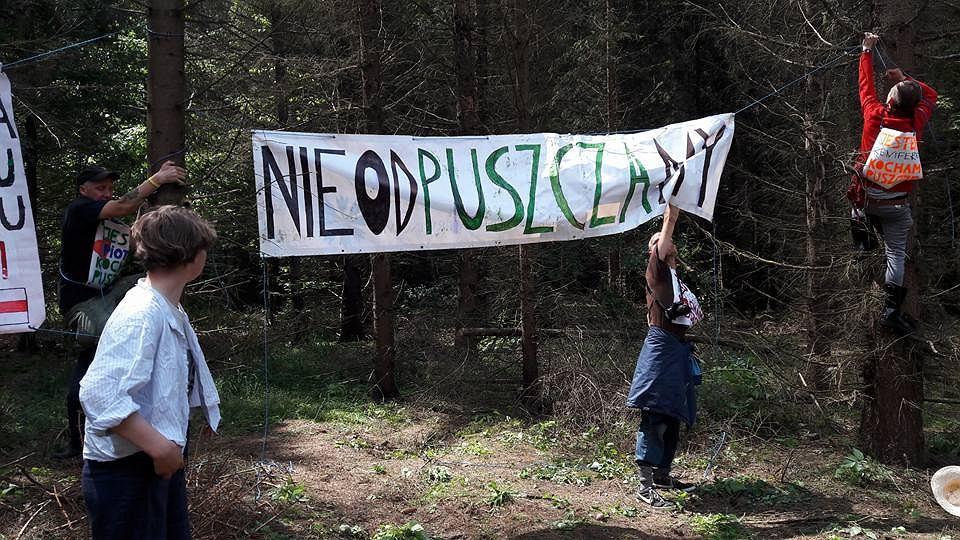 Szósta blokada wycinki Puszczy Białowieskiej