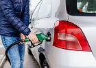 Ile stacji benzynowych wykosi zmiana koncesji? URE rozpoczyna weryfikację wniosków, ale nie ma do tego ludzi