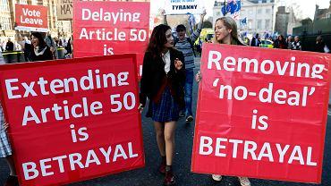 Popierający brexit przed budynkiem parlamentu