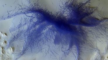 Niebieski 'pająk' na Marsie